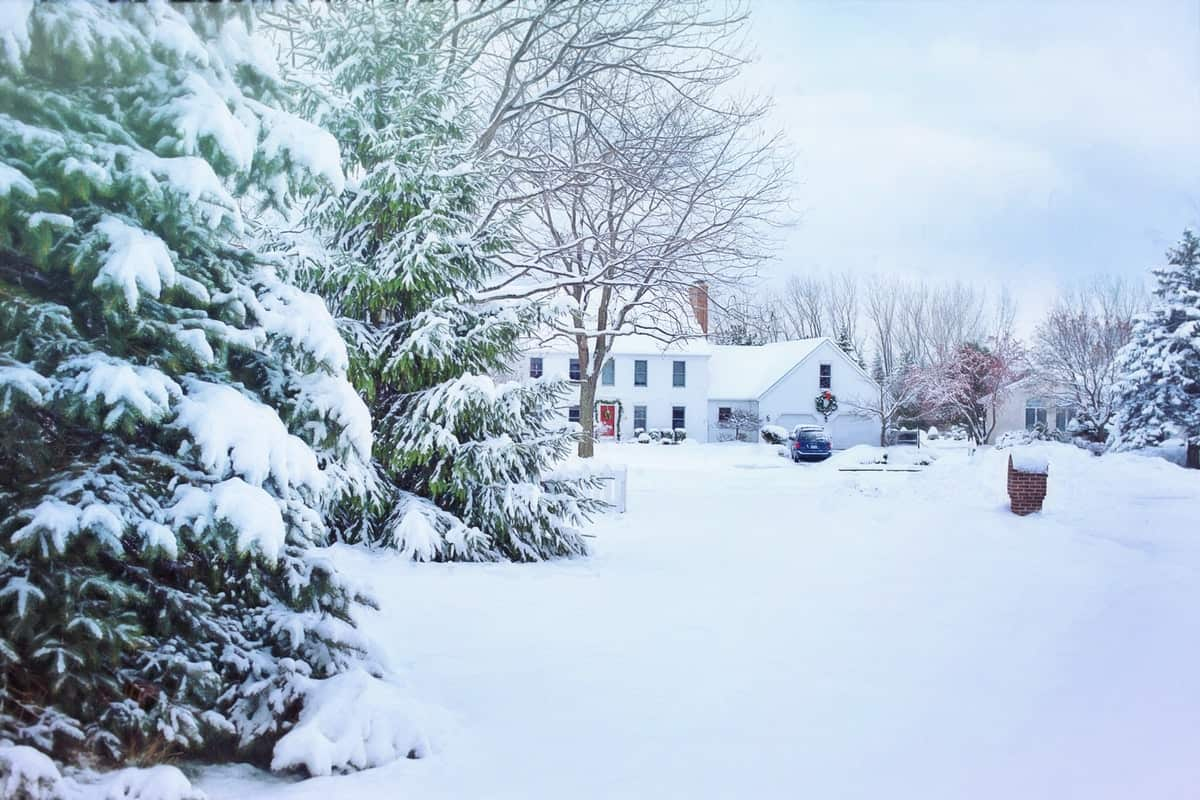 Lawn Care Tips For A Cold, Harsh Winter