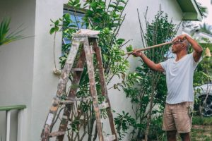 A Must Know Top Benefits Of Exterior House Painting