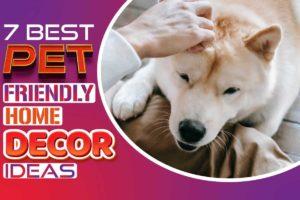 7 best pet friendly home decor ideas